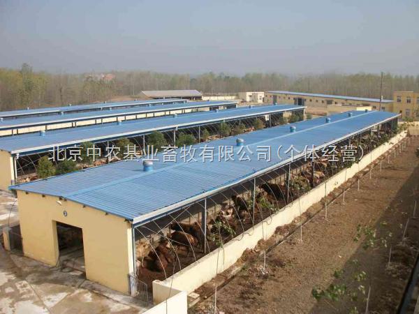 北京中农基业牧场规划设计,牛颈枷,牛体刷,犊牛栏专卖