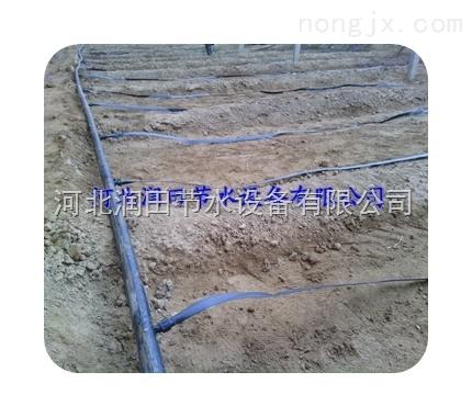 湖南蔬菜大棚滴灌带//PE滴水带厂家