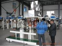 塑料粒子包装秤,颗粒包装机,片碱包装机械