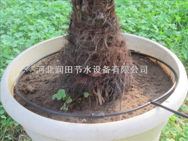 重庆核桃果树水管|小管出流红色可调滴头