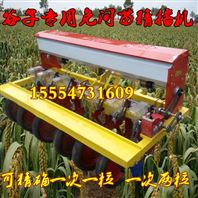 大型拖拉机带的蔬菜播种机 家用玉米播种机 谷子专用精播机