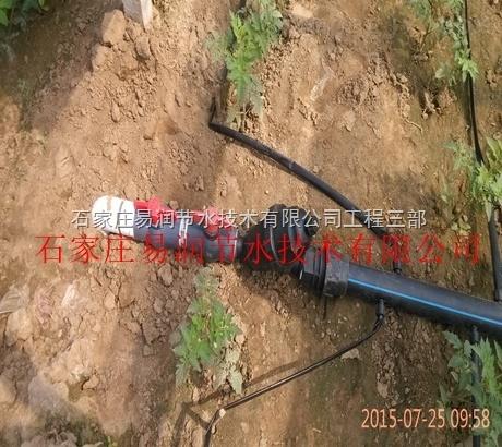 闻喜县大田滴灌技术 内镶滴灌带 网式过滤器