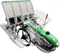 2ZS-430S四行手扶式水稻插秧机厂家