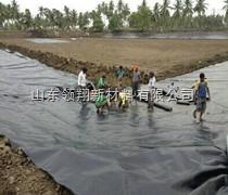 山东鱼塘0.3毫米防渗膜厂家现货批发