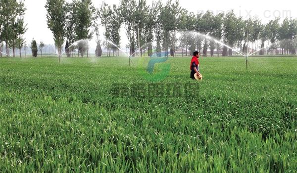 江西大田/果园/花卉/温室/蔬菜灌溉设备价格