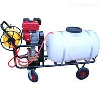 打药喷雾器厂家 手推打药喷雾器规格 汽油喷雾器