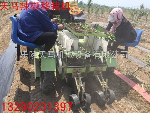2ZQ-高效插秧机, 全自动辣椒移栽机尽在乐陵天马机械