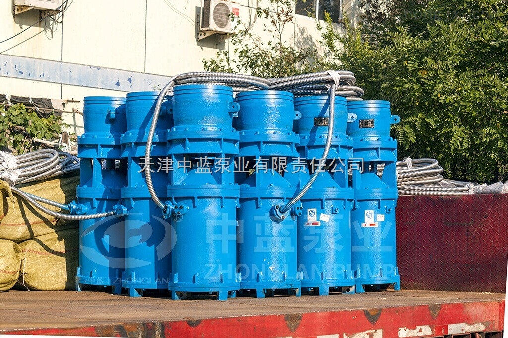 移动式潜水轴流泵