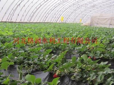 优质大棚灌溉塑料管产品、过滤器设备供应陕西地区