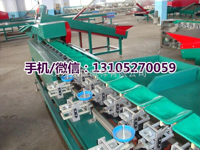 XGJ-沾化冬枣自动分选分级机,台湾青枣精度高的分选机
