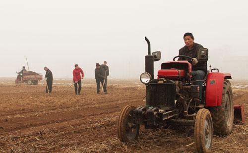 春耕生产进展顺利 农业调转结构方式有序推进