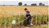 山区水稻收割机,进口大型水稻收割机,东北水稻收割机,雷沃水稻收割机,厂家直销 小型收割机 收割机 水稻收割机 汽油收割机